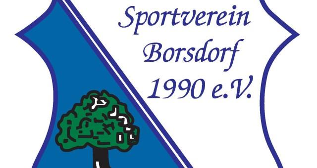LOGO SV Borsdorf-1