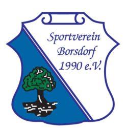 Sportverein Borsdorf 1990 e. V.